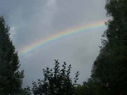 a rainbow today, during light rain shower