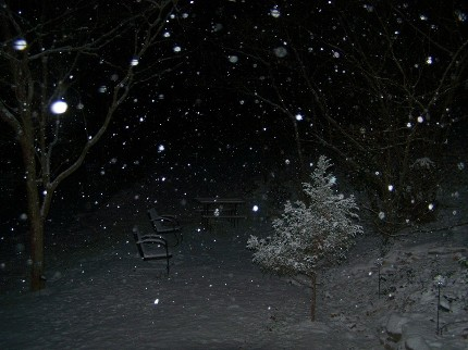 snow falling in the dark
