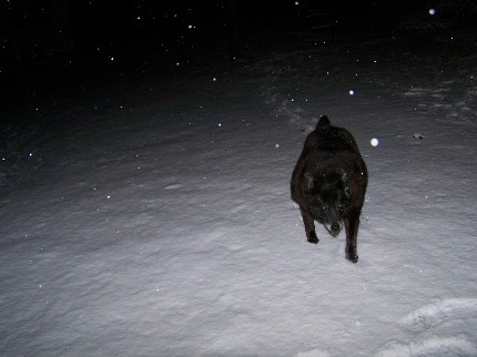 samantha in the snow
