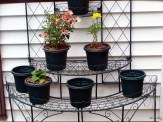 plant stand and containers