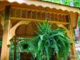 ornate trim and ferns