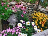 flower bed in back yard