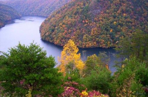 lake and fall color