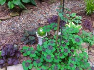 iron cross oxalis in the secret garden