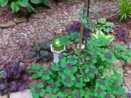 iron cross oxalis in the secret garden