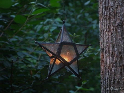 star candle lamp in secret garden