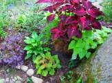 outer edge of secret garden