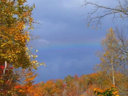 rainbow over fall color