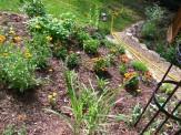 gallardia slope flower bed