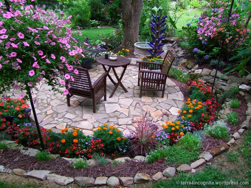 Begonias, Marigolds, And Mushrooms Patio Closer View