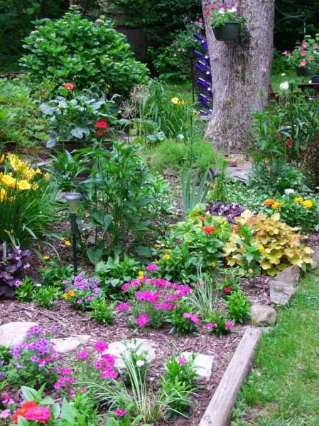 annual phlox, zinnias, dianthus