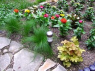 Mexican feather grass, Vinca, zinnias