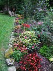 creek border with mixed planting
