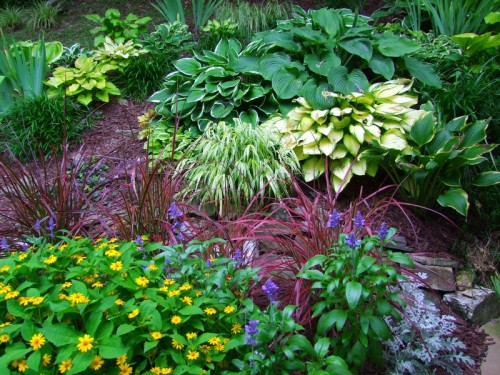trail flower bed